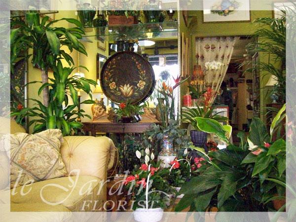About high end florist palm beach 561 460 7109 for Le jardin high wine